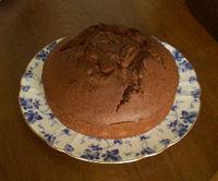 Chocolatecake0428