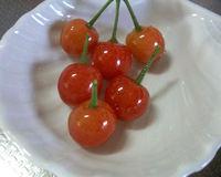 Cherry0512_3