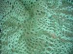 Crochet0628