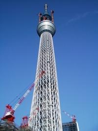 Skytree_3