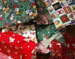 Christmascloth1020