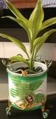 Plantpotcover104_2