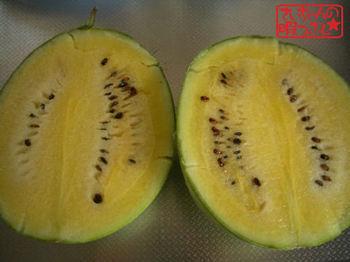 Watermelon806